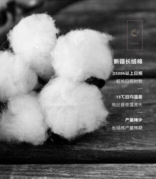"""博洋家纺2018秋冬新品——""""海德""""系列全面上市"""